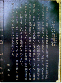 201005204